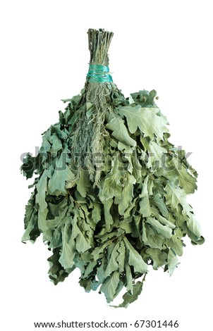 Broom from dry oak branches, for massage procedures in Russian bath. With wormwood addition. It is isolated on a white background.