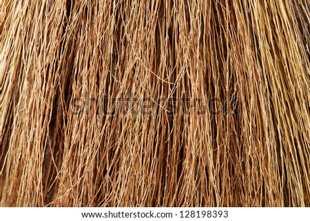 Broom Straw Close-up, Background