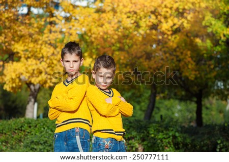 Brother\'s power. Two cute boys in the park on an autumn day standing back to back with crossed arms and looking at camera.
