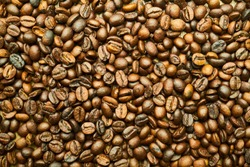 Brown and DarkBrown Coffee