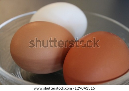 Brown and White Eggs
