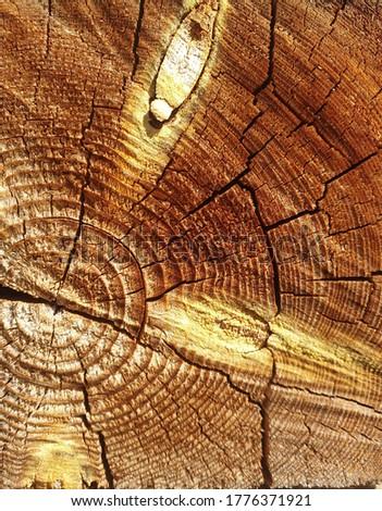 brown and yellow natural material wood texture wallpaper