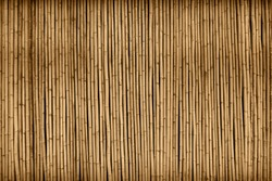 brown bamboo fence texture background