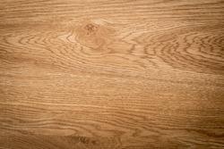 Brown beech wood texture grunge surface.