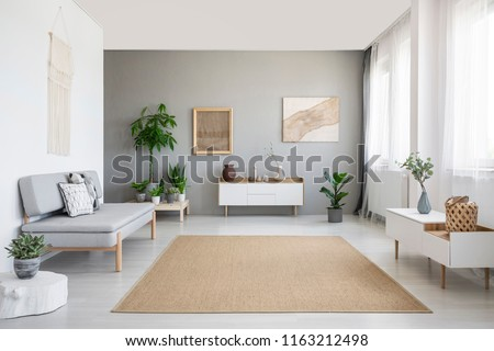 Brown carpet between white cupboard and sofa in grey living room interior with posters. Real photo