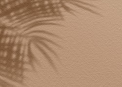 Brown clay mud grunge cement texture wall leaf plant shadow background.Summer tropical travel beach with minimal concept. Flat lay palm nature.