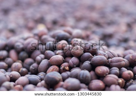 Brown coffee beans in shell.