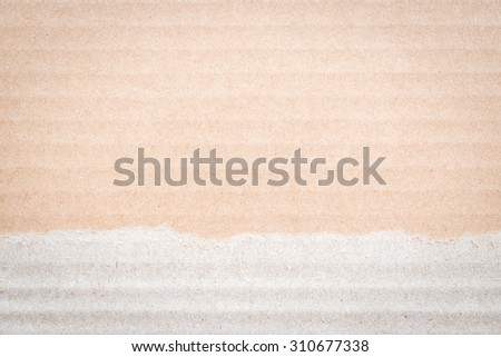 Brown color cardboard paper detail texture patterned background: Cardboard textured pattern detailed grunge backdrop in brown cream colour tone with torn edge with empty space for adding text