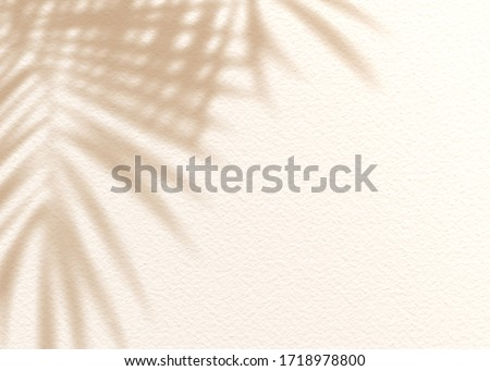 Brown cream clay mud grunge cement texture wall leaf plant shadow background.Summer tropical travel beach with minimal concept. Flat lay palm nature. Stockfoto ©