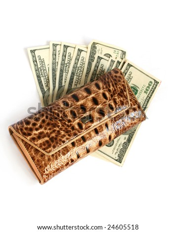 Brown croco  leather wallet and dollars isolates on white