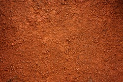 Brown dirt (soil) as background.