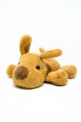 Brown dog stuffed doll