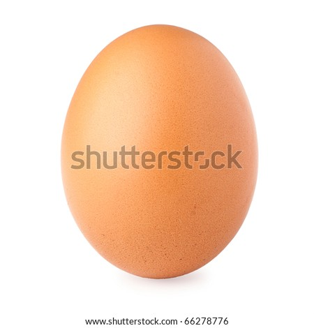 Brown egg on white background - stock photo