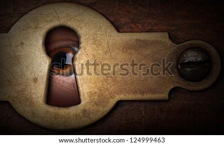 brown eye looking through a...