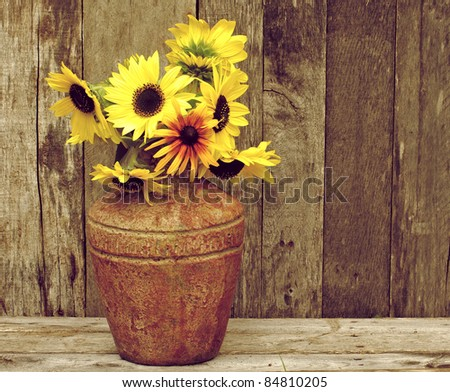 Brown eyed Susan flowers in a rustic vase on a grunge wood backdrop with copy space.
