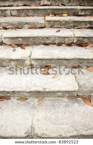 brown fallen leaves on ancient stone stairs