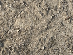 brown, gray soil floor, surface background floor