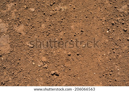 Brown ground surface. Close up natural background stock photo
