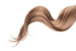Brown hair isolated on white background. Long wavy ponytail