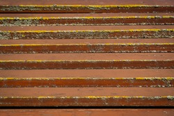 Brown horizontal boards like steps of a ladder covered with brown paint and dry yellow moss. Background.