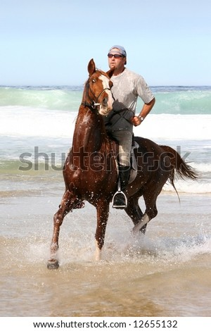 Brown horse and rider in the water at the beach
