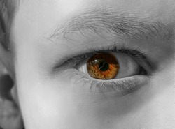 Brown human eye, boy, black and white edit