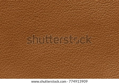 Brown leather texture background, skin texture background. #774913909