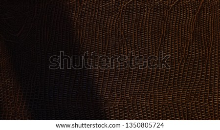 Brown leathery scaly-colored surface of the cover with a shadow band in dim light
