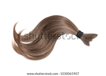 Brown natural hair isolated on white background. Ponytail