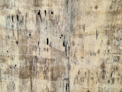 brown old plank background with mold stains and decay use as backdrop as plywood sheet