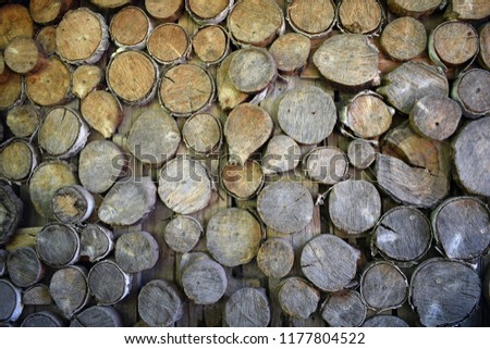Brown or gray wood texture with cut round logs. Natural background. Eco wall. Surface with old wooden pattern. #1177804522