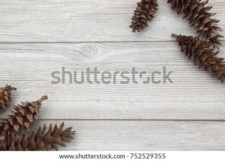 Brown Pinecones laying on a white aged wooden backdrop for fall decoration #752529355