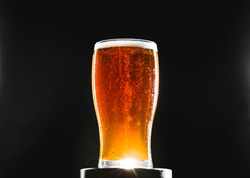 Brown Red Ale Homebrew Beer Pint on a Stand in Studio with Dramatic light
