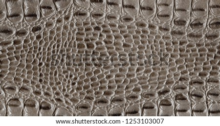 Brown reptile natural leather texture. Snake or crocodile skin pattern. Element for design. Medieval, exotic or fantasy background.