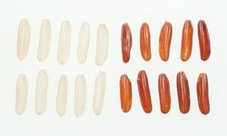 brown rice isolate on white background