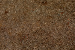 brown rock with a rough texture
