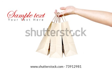 brown shopping bag in a woman hand isolate