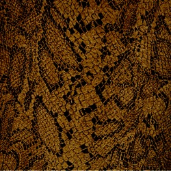 brown snake fur texture or background