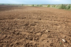Brown soil of an agricultural field