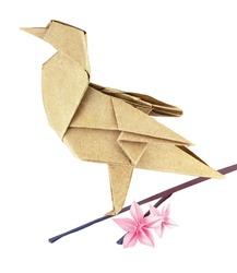 Brown spring origami bird on a sakura branch