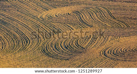 Brown tilling with curving track marks empy field #1251289927