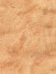 Brown watercolor background