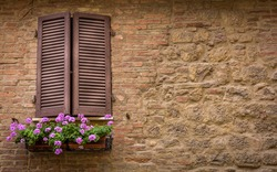 Brown window shutters and purple decorative flowers