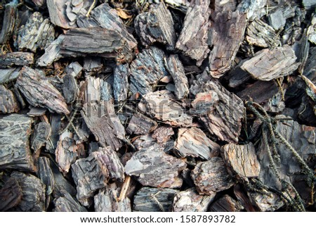 Brown wood shavings, wood chips background. wood chips texture