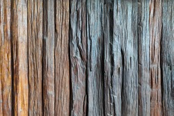 Brown wood splat with surface texture background of wooden wall.