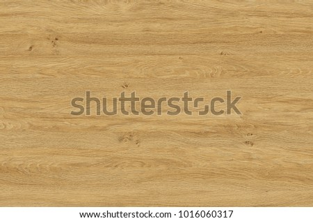 Brown wood texture. Abstract wood texture background #1016060317