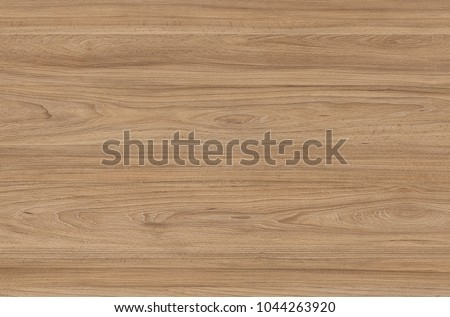 Brown wood texture. Abstract wood texture background #1044263920