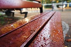 brown wooden empty bench in the park after rain in the afternoon bottom view