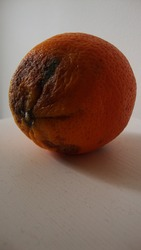 Brownish slightly spoilt orange on a white surface