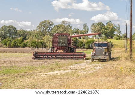 BRUCE, MS/USA - OCTOBER 2014: Working day and night to beat the rain, local soybean farmers rush to harvest their soybeans.